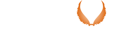 Tulpen ballonvaart / Tulip balloon flights - Dreamflights